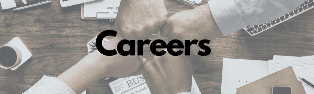 dsd-careers